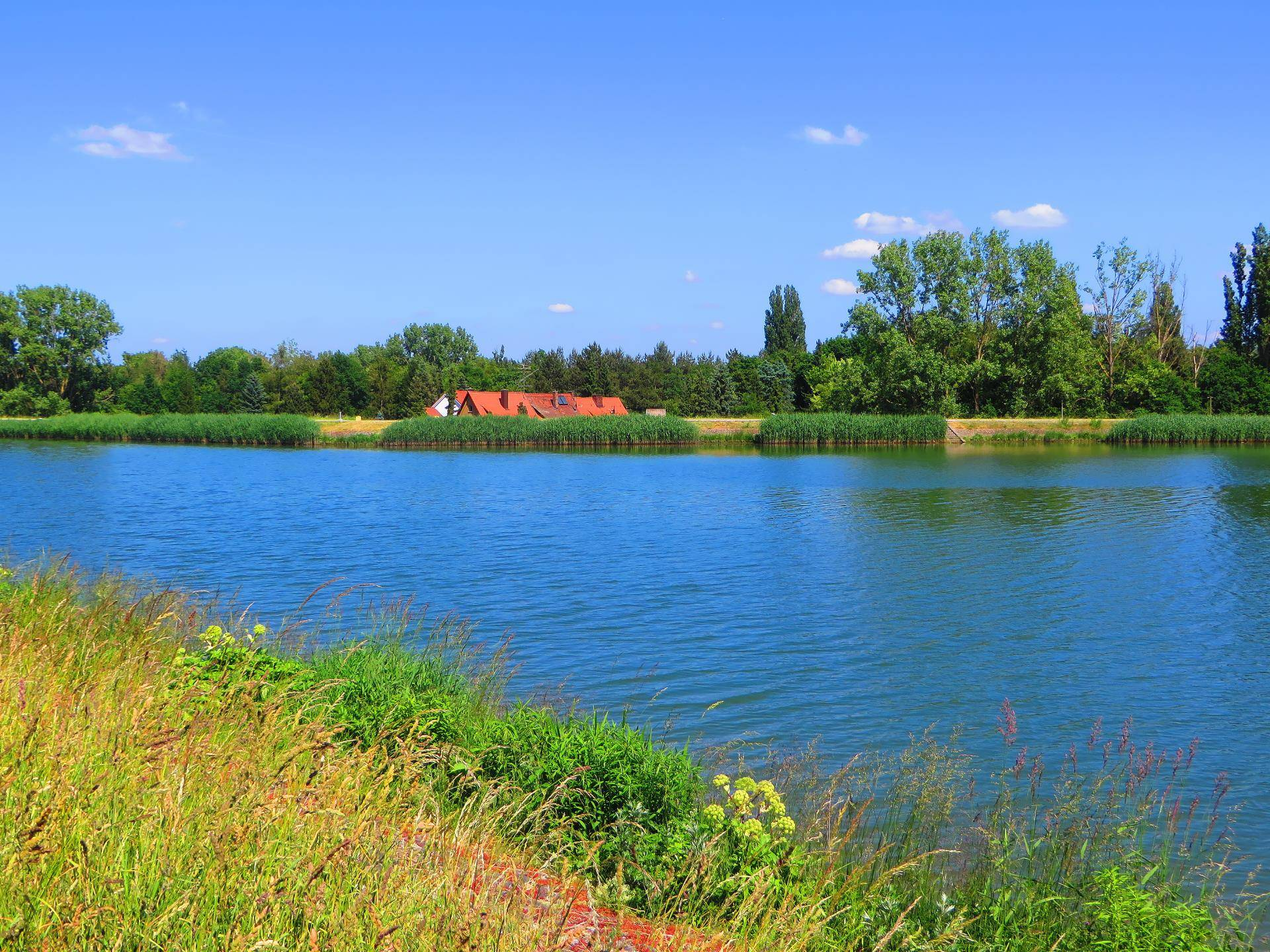 Flusskreuzfahrt: Rhein-Main-Donau-Kanal