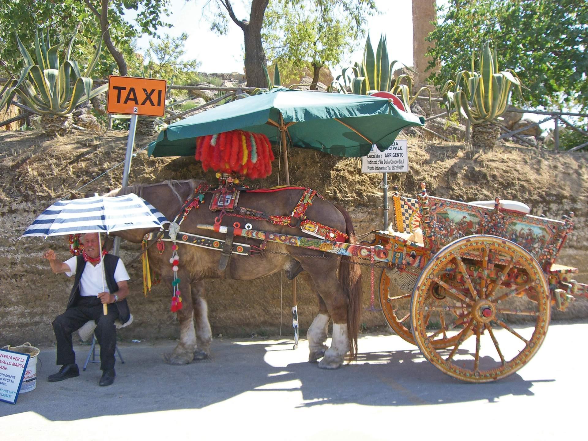 Traditioneller Pferdewaagen