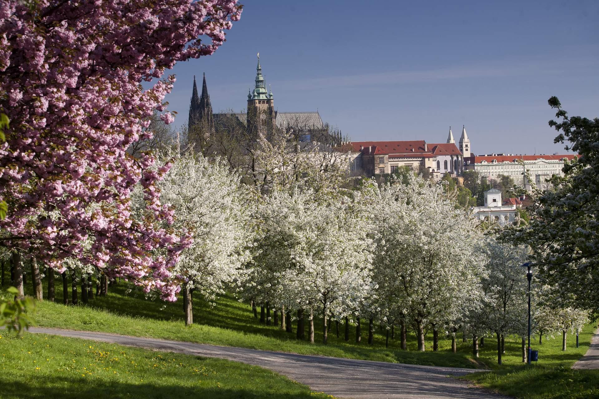Prag im Frühling