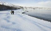 Nordkap: Winter