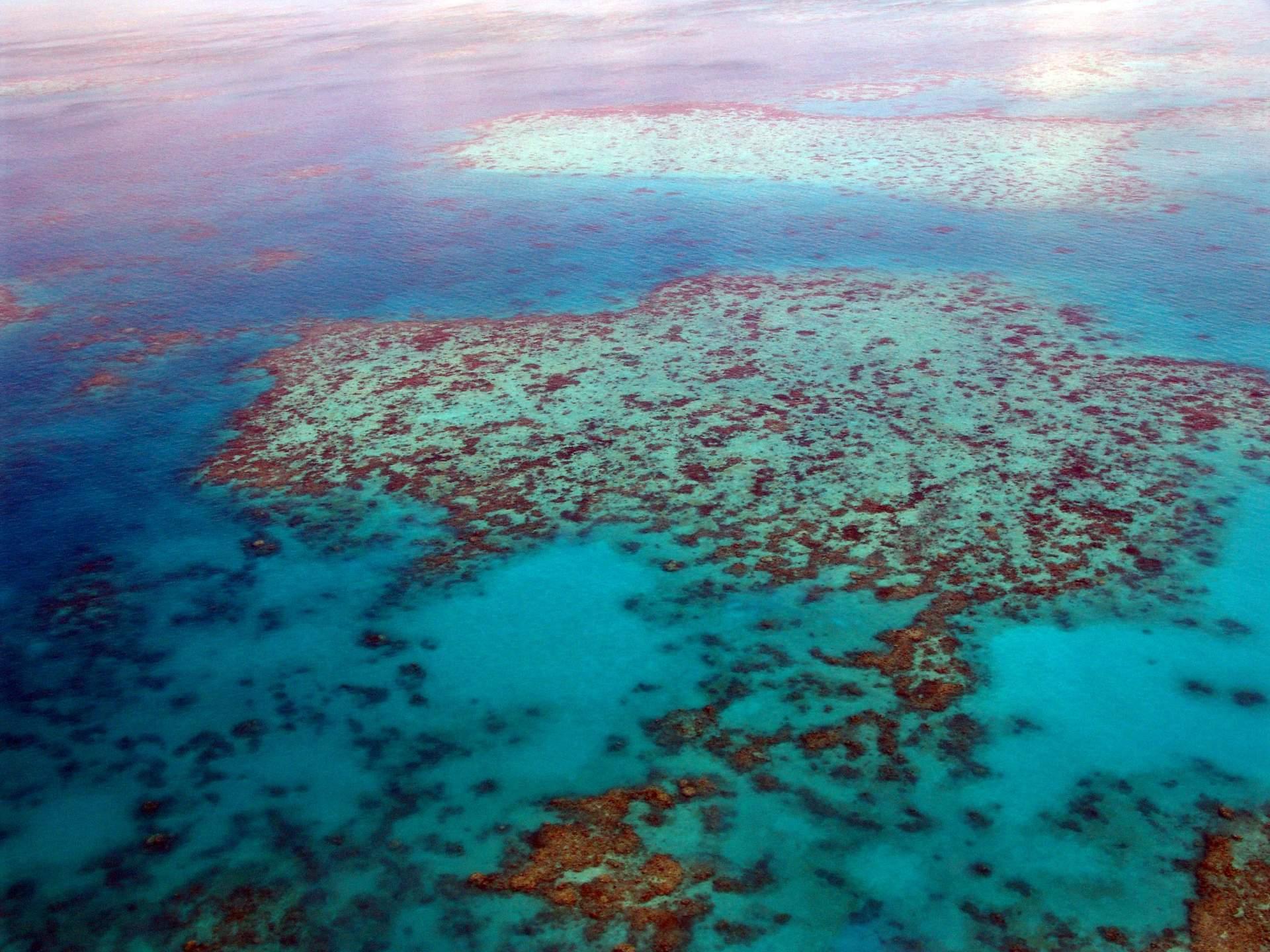 Australien: Great Barrier Reef