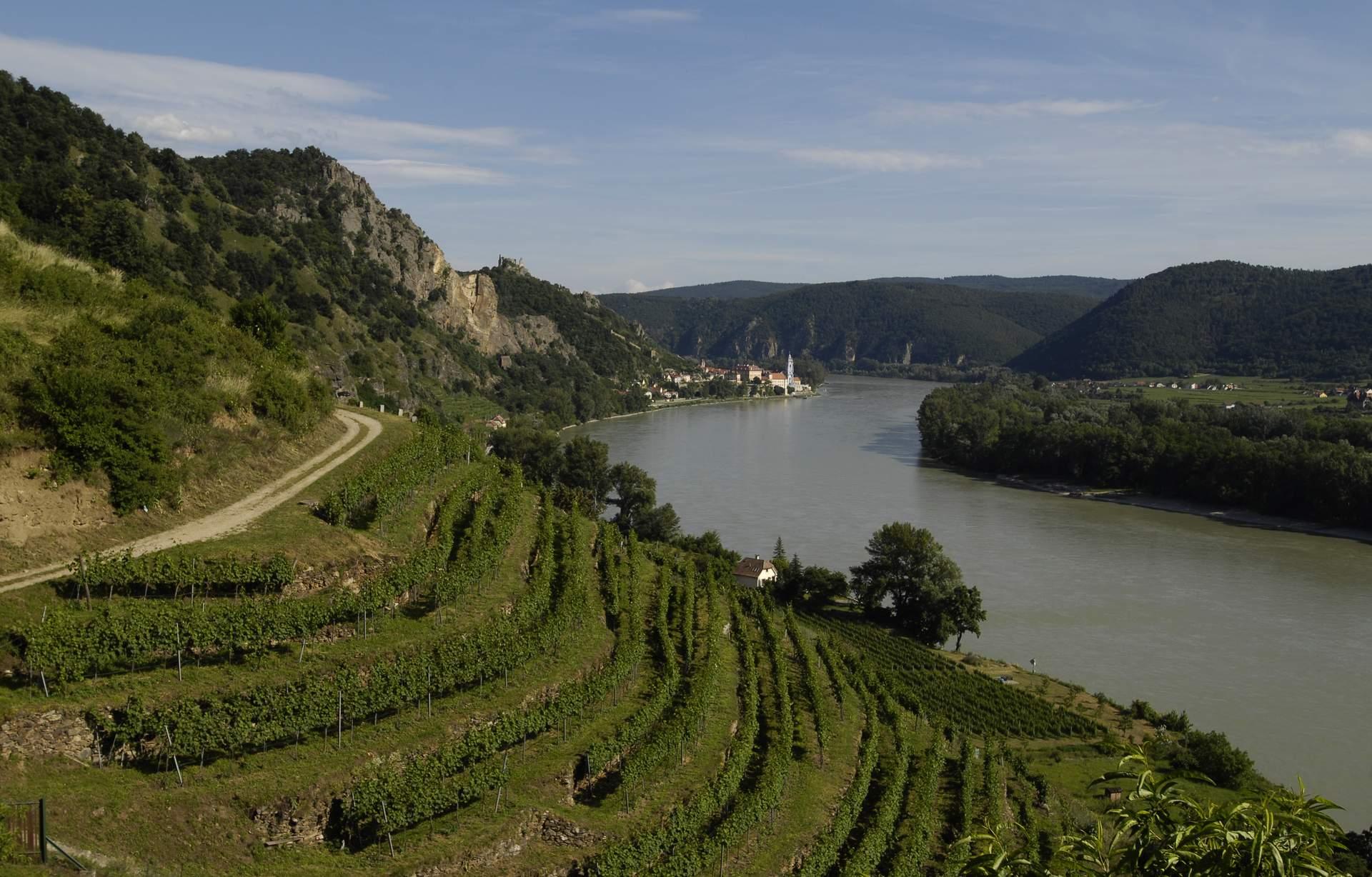 Wachau: Weinreise