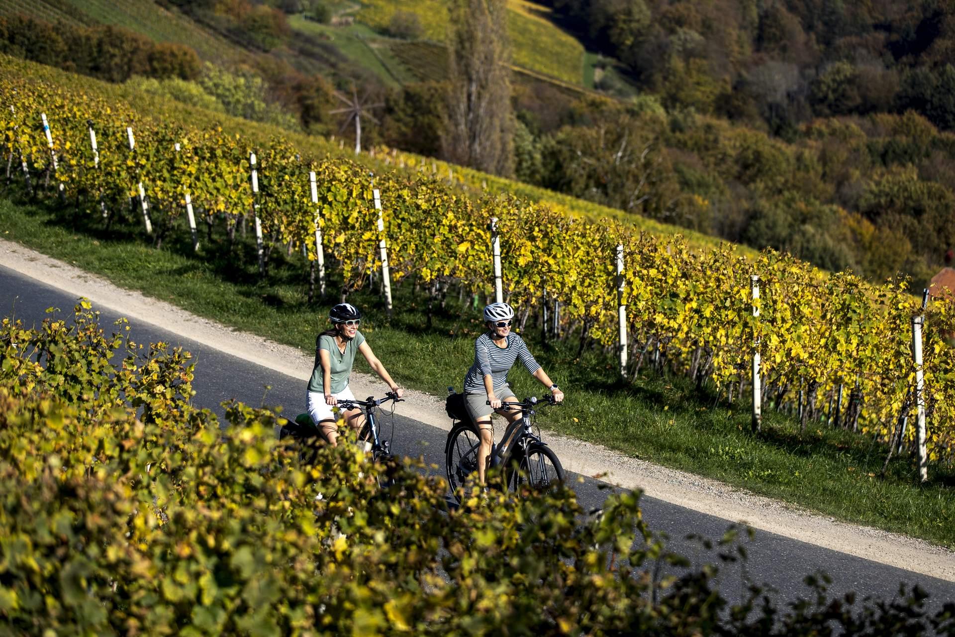 Steiermark: © Steiermark Tourismus/Tom Lamm